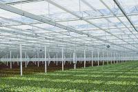 tuinbouw techniek noord nederland