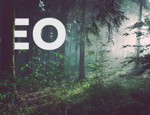 Basisprincipes SEO: Gevonden worden in Google