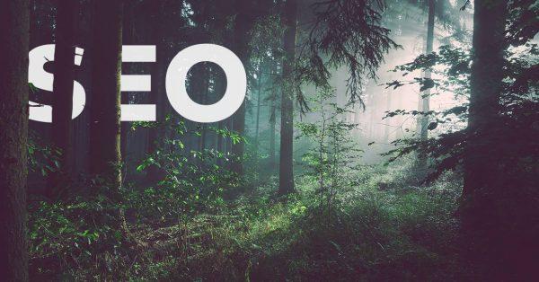 Basisprincipes SEO: Word vindbaar in Google